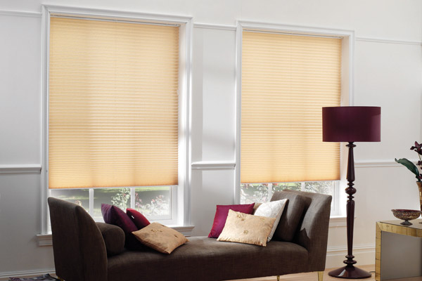 Living room pleated blinds